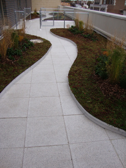 Green roof application with our rubber pavers as a walkway